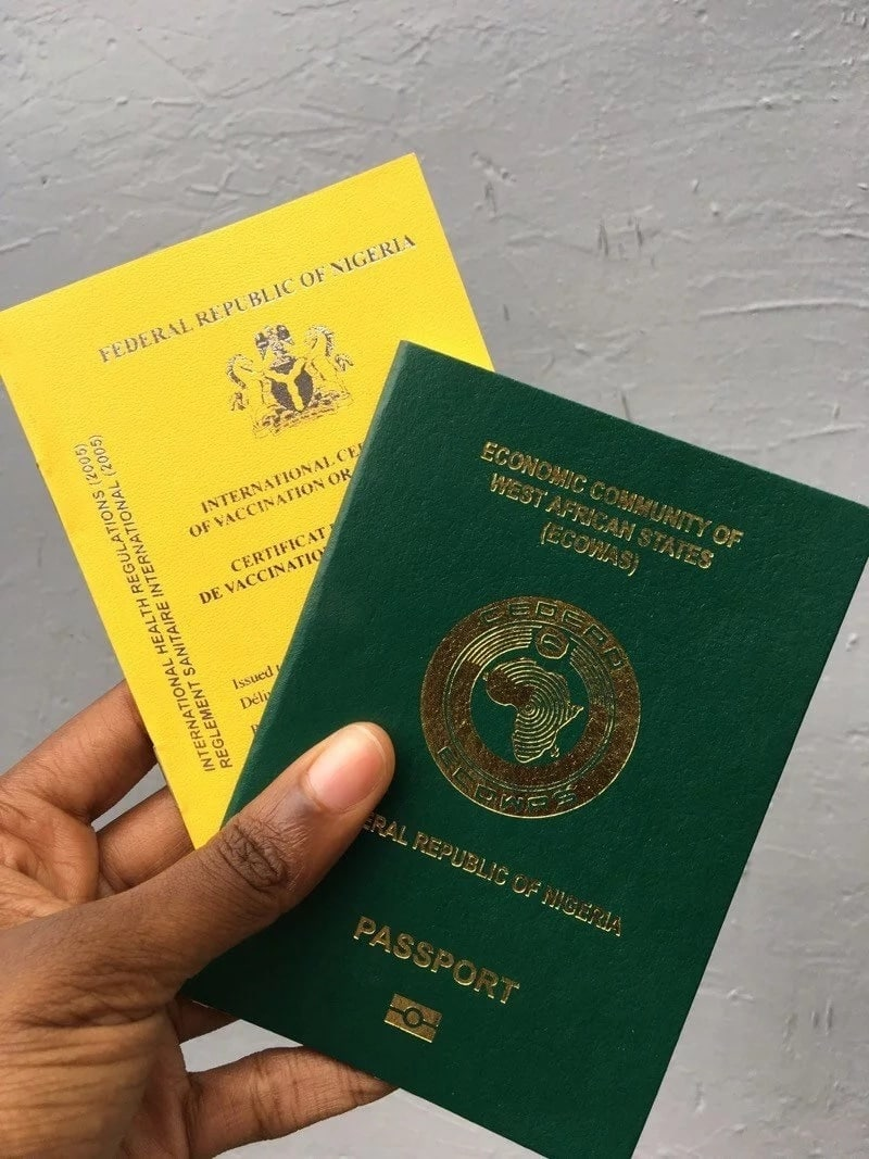 Where is Nigerian passport book number located?